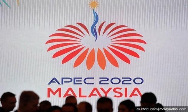 Le Sommet de l'APEC se tiendra en ligne le 4 decembre hinh anh 1