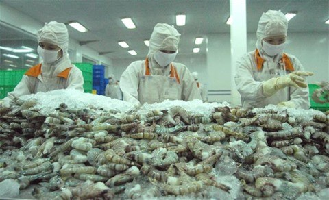 L'EVFTA dope les exportations vietnamiennes de crevettes vers l'UE hinh anh 1