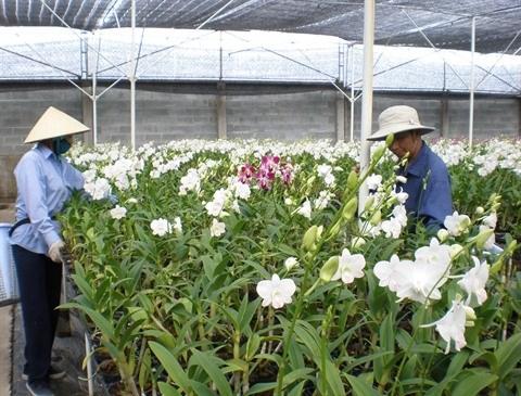 Le point sur la biotechnologie a Ho Chi Minh-Ville hinh anh 1