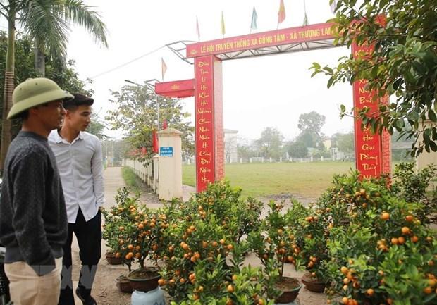 Les habitants de Dong Tam unis pour construire la nouvelle ruralite hinh anh 1