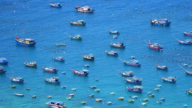 2.500 milliards de dongs pour une enquete sur l'environnement marin hinh anh 1