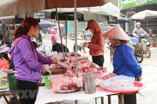 Les habitants de Dong Tam unis pour construire la nouvelle ruralite hinh anh 2