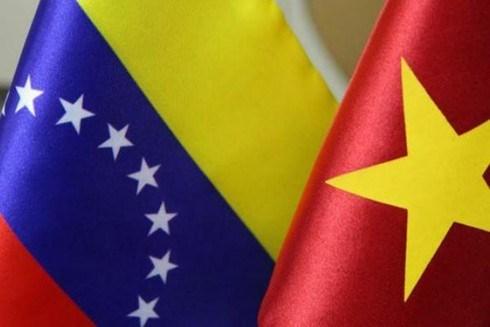 Le Vietnam et le Venezuela tiennent la 8e consultation politique hinh anh 1