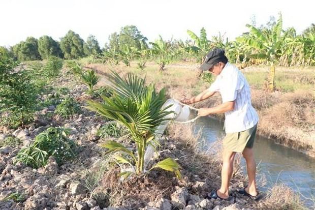 L'Inde finance sept projets d'eau dans le delta du Mekong hinh anh 1