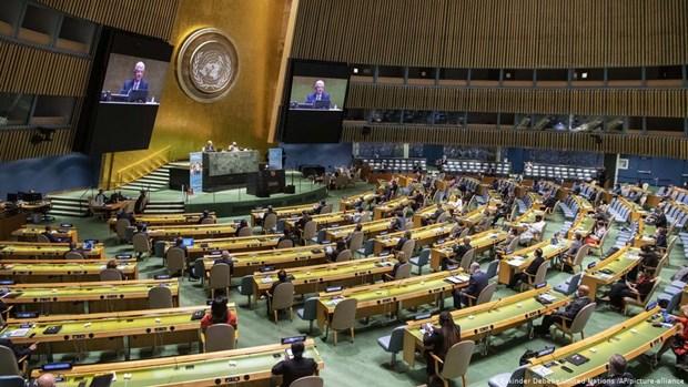 Accompagner l'ONU pour relever les defis communs hinh anh 1