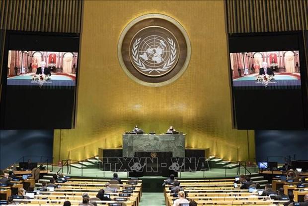 Le Vietnam souhaite renforcer les relations de cooperation integrale avec l'ONU hinh anh 1