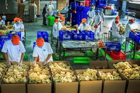 Les investissements etrangers transforment la province de Binh Duong hinh anh 2