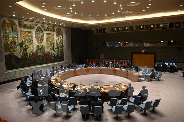 Le Vietnam soutient les efforts conjoints de l'ONU et de l'UA pour promouvoir la paix en Afrique hinh anh 1