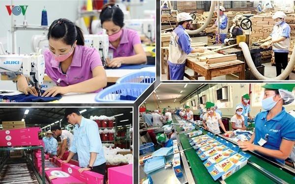 Les creations d'entreprises resistent a la crise du coronavirus hinh anh 1