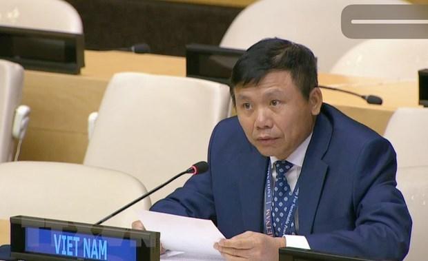 Le Vietnam souligne le dialogue dans le reglement des conflits en RD-Congo hinh anh 1