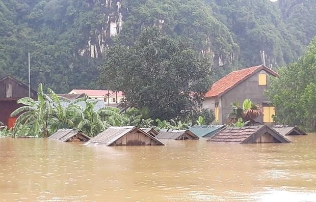 Les catastrophes naturelles provoquent 215 millions de dollars de pertes hinh anh 1