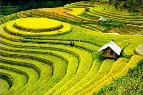Le Vietnam dans le Top 10 des meilleurs pays pour faire du tourisme hinh anh 1