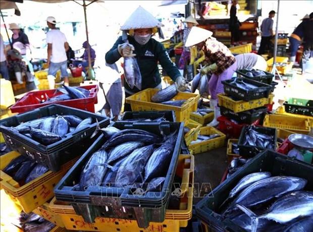 Un atelier cherche des solutions de promouvoir les exportations de thon vers l'UE hinh anh 1