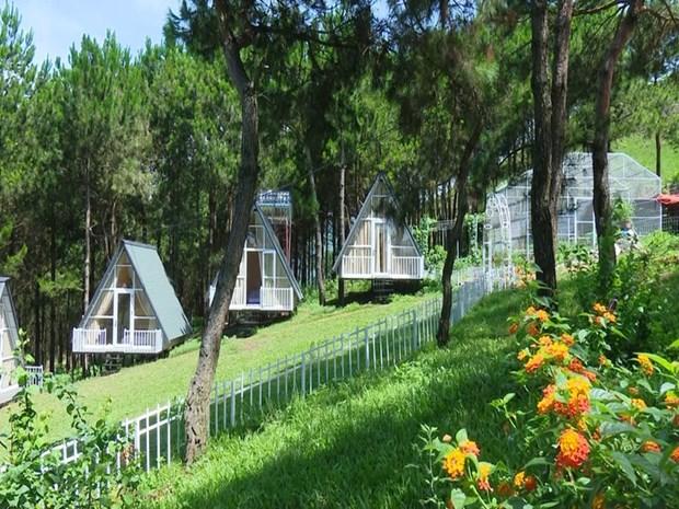 Pu Nhi Farm, la nouvelle destination du Nord-Ouest hinh anh 1