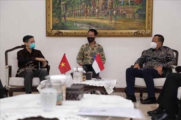 Le Vietnam et l'Indonesie intensifient la cooperation maritime et de peche hinh anh 1