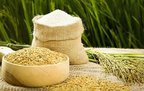 Le riz vietnamien arrive a maturite sur le marche mondial hinh anh 3