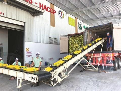 Les exportateurs vietnamiens sont prets pour l'EVFTA hinh anh 2