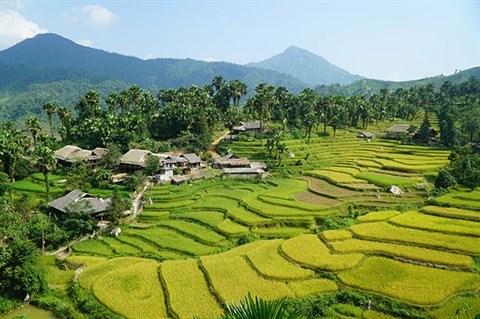 Trek d'exception dans le village de Ban Lien a Lao Cai hinh anh 1
