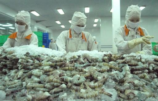 Le Canada, un grand marche potentiel pour les produits vietnamiens hinh anh 1