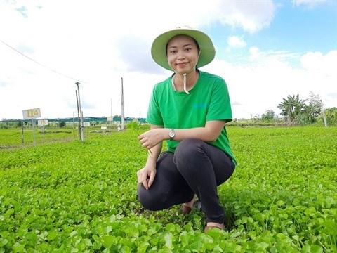 La pionniere de l'exportation de poudre de plantes herbacees vers l'Europe hinh anh 1