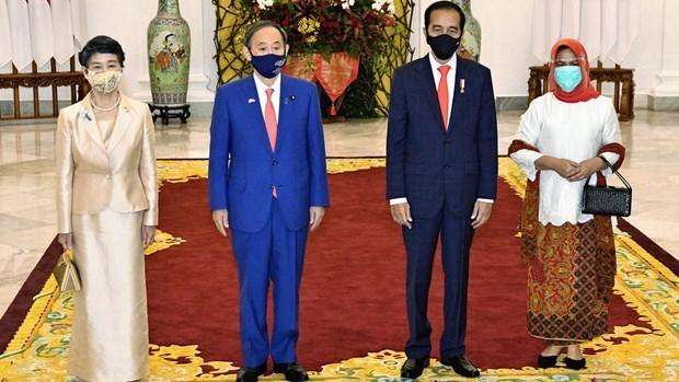 Le PM japonais apprecie le succes de sa tournee au Vietnam et en Indonesie hinh anh 1