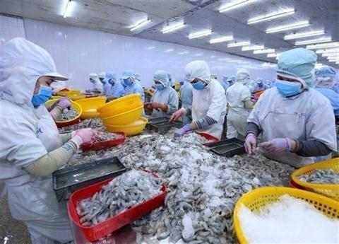 Les exportations vietnamiennes de crevettes bondissent en septembre hinh anh 1