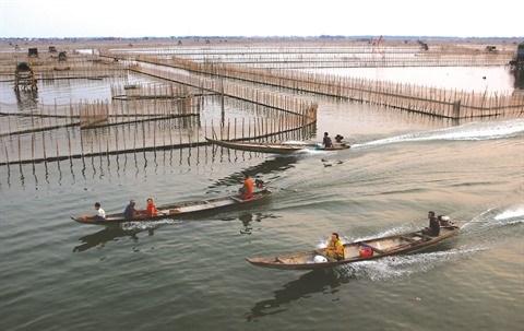 Thua Thien-Hue : Entre terre et mer, le marais de Chuon hinh anh 1