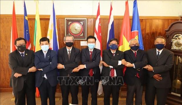 Les ambassadeurs aseaniens en Afrique du Sud saluent la preparation du Vietnam pour le 37e sommet du bloc hinh anh 1