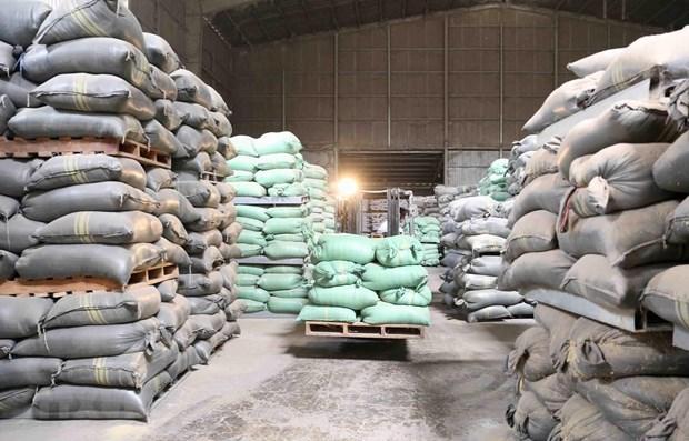 Le gouvernement fournit plus d'aide de riz aux provinces centrales hinh anh 1