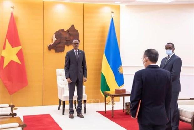 Le Rwanda souhaite promouvoir les relations de cooperation d'amitie avec le Vietnam hinh anh 1
