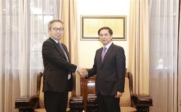 Promotion du partenariat strategique approfondi Vietnam-Japon hinh anh 1