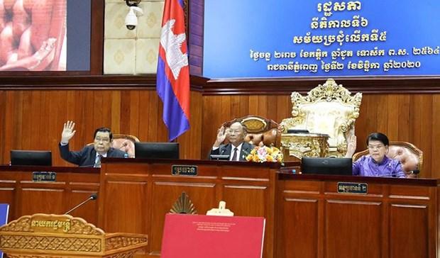 L'Assemblee nationale du Cambodge approuve six projets de loi hinh anh 1