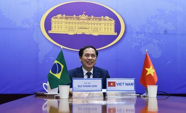 Consultation politique Vietnam-Bresil hinh anh 1