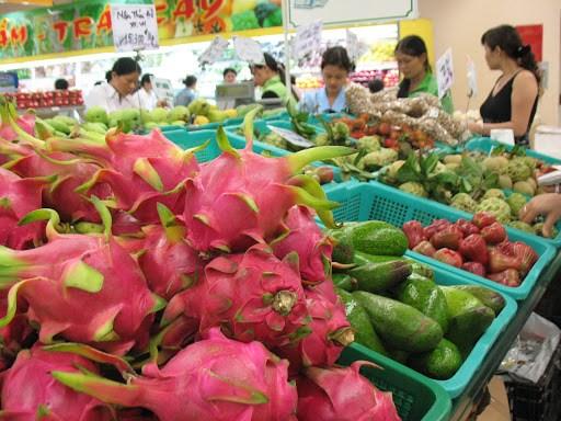 Le Vietnam œuvre pour figurer parmi les principaux pays exportateurs de fruits et legumes hinh anh 1