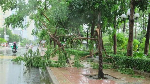 Le typhon Etau fait deux morts dans la region du Centre hinh anh 1