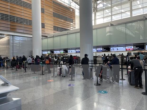 COVID-19 : rapatriement de plus de 340 Vietnamiens du Japon hinh anh 1