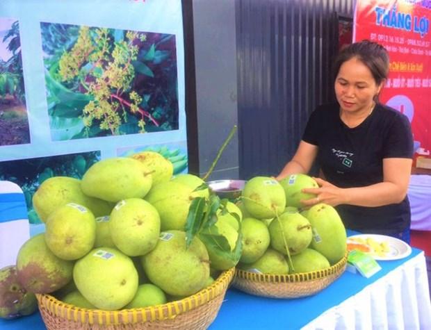 2,8 millions de dollars d'exportations vietnamiennes de mangues aux Etats-Unis hinh anh 1