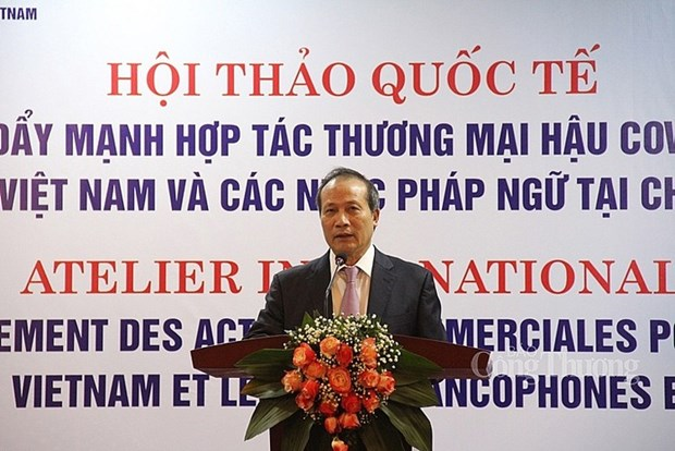 Commerce post-coronavirus: le Vietnam regarde du cote de l'Afrique francophone hinh anh 3