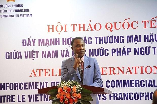 Commerce post-coronavirus: le Vietnam regarde du cote de l'Afrique francophone hinh anh 1