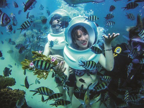 La Reserve marine de Phu Quoc, un paradis sous-marin hinh anh 2