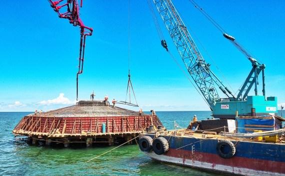 Le delta du Mekong attire de plus en plus d'investisseurs etrangers hinh anh 1