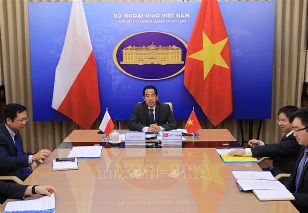 Vietnam-Pologne : consultation politique en ligne au niveau de vice-ministres hinh anh 1