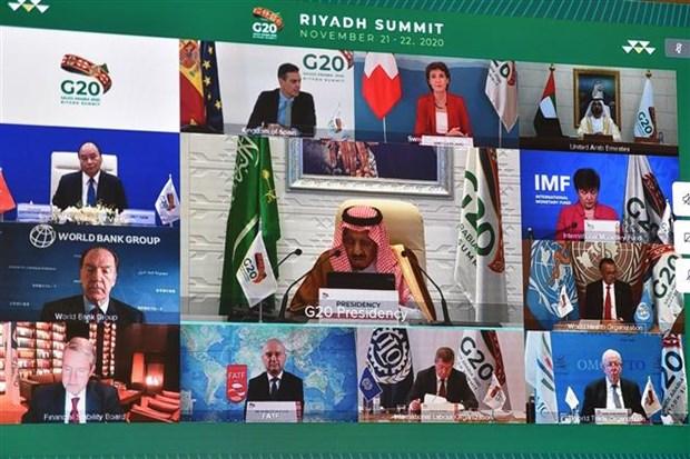 Sommet du G20 : l'OMC appelle a soutenir les pays en developpement hinh anh 1