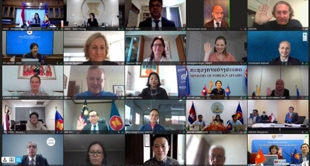Reunion speciale de la Commission intergouvernementale des droits de l'homme de l'ASEAN hinh anh 1