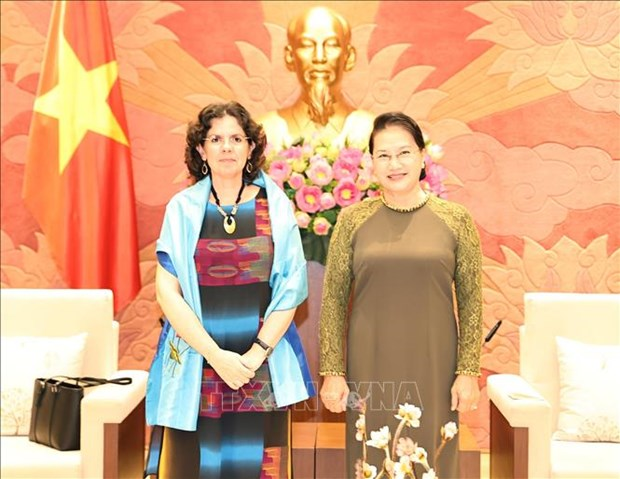 La presidente de l'AN recoit l'ambassadrice de Cuba au Vietnam hinh anh 1