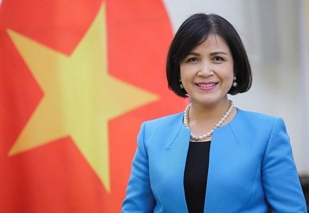 Le Vietnam booste sa cooperation avec le Centre international de deminage humanitaire hinh anh 1