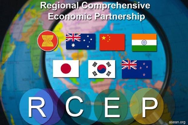 Le RCEP donne un nouvel elan a la cooperation Chine-ASEAN hinh anh 1