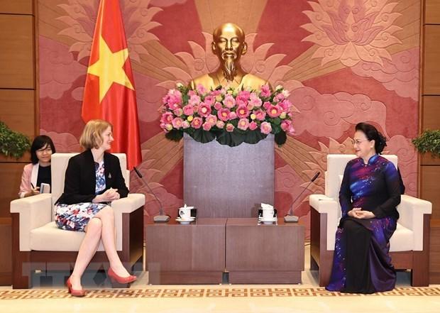 Le Vietnam cherit ses liens avec la Nouvelle-Zelande, le Chili et l'Indonesie hinh anh 1