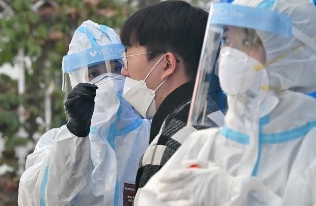 Les etudiants vietnamiens infectes par le COVID-19 en R. de Coree recoivent de bons soins hinh anh 1