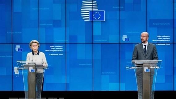 Les dirigeants de l'UE souhaitent renforcer la cooperation avec le Vietnam hinh anh 1